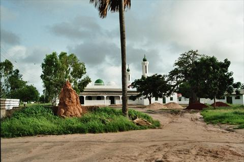 Mosque and termites