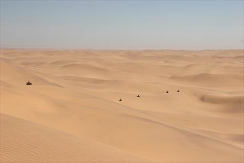 Quadbikes in desert