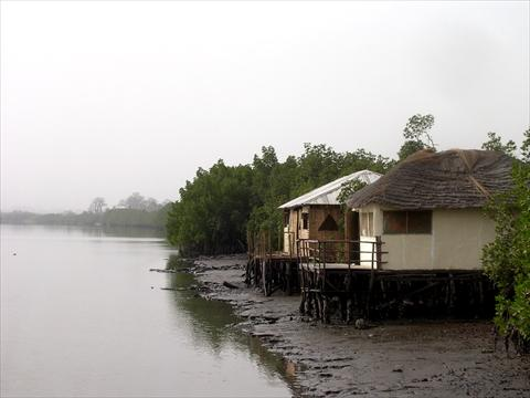 Huts in the magroves
