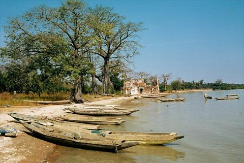 At the Gambia River