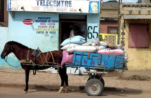 Rice delivery