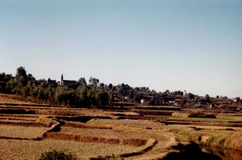 Fields outside the village