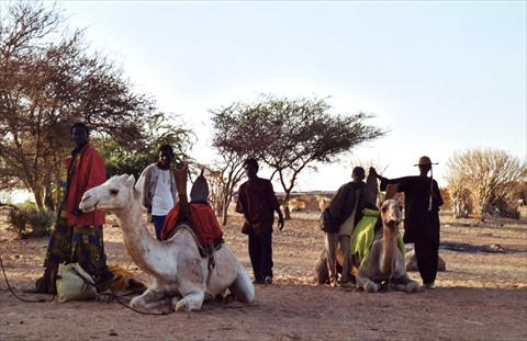 Nomads with their camels