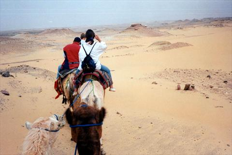 Trip on camels